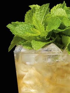 Rum Julep Image