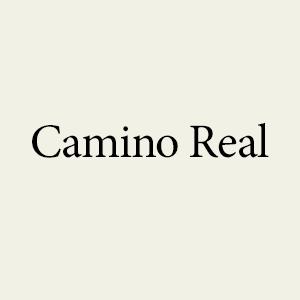 Camino Real Image