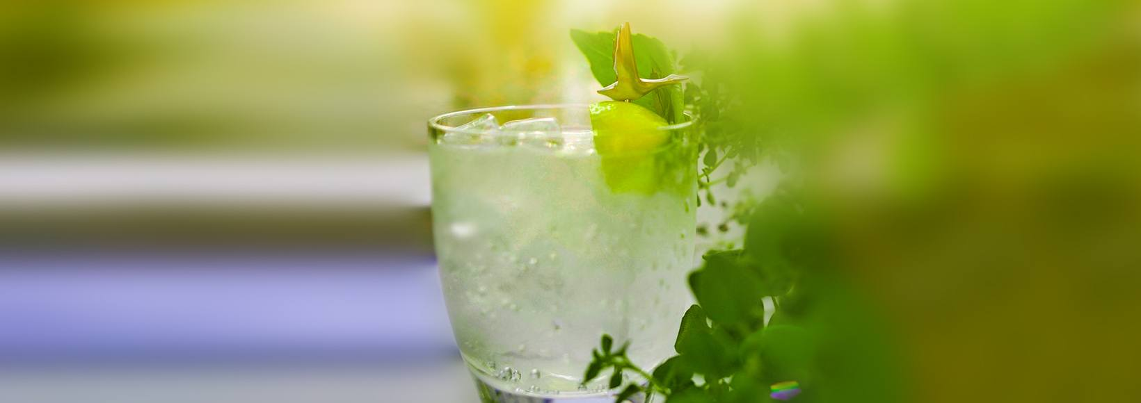 GREY GOOSE Lime and Soda