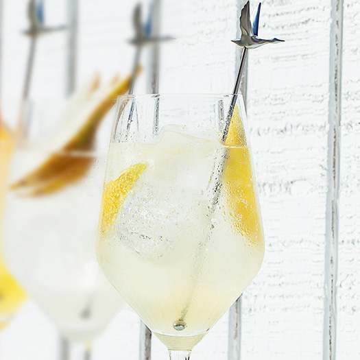 LE CITRON GRAND FIZZ