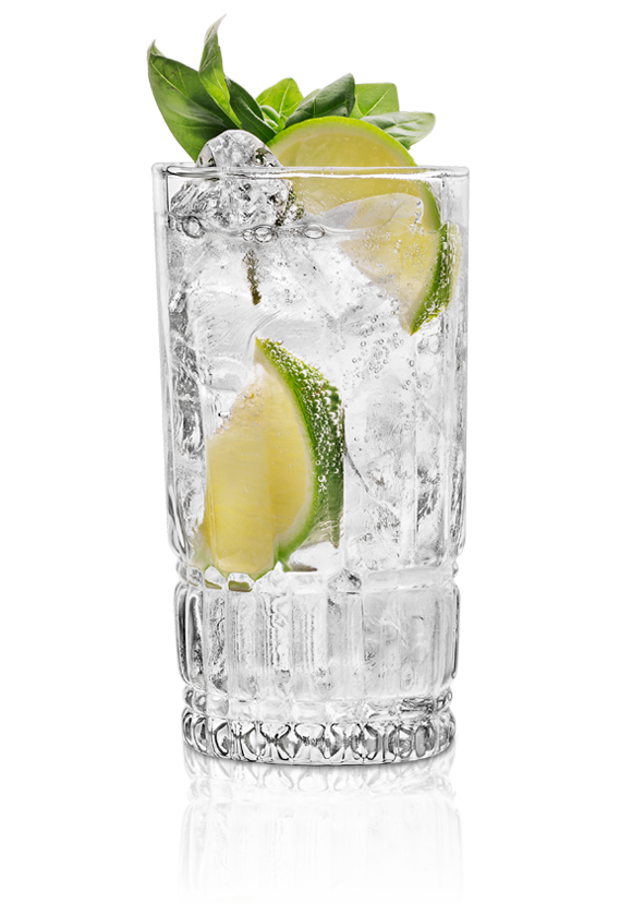 The St~Germain Gin & Tonic
